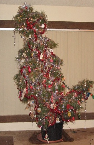 Christmas Trees The Good Bad And The Ugly Little Miss